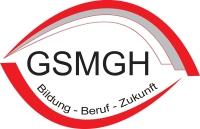 Schullogo der Gewerblichen Schule Bad-Mergentheim